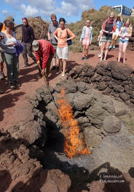 Per demostrar l'escalfor que surt de la terra, els matolls cremen ràpidament