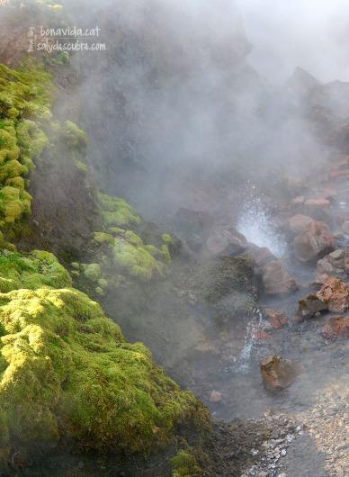Brollidors d'aigua calenta a Deildartunguhver