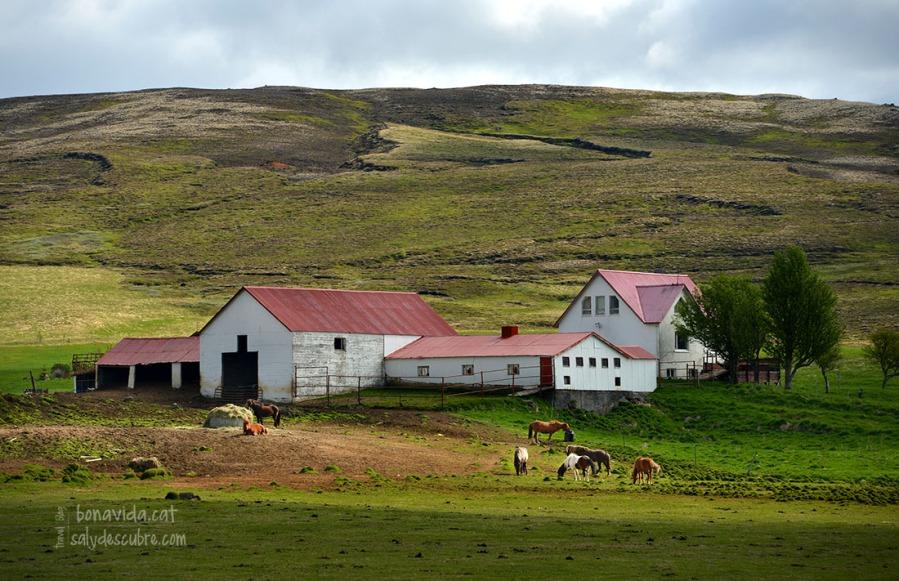 Només algunes llunyanes granges ens acompanyen durant la ruta