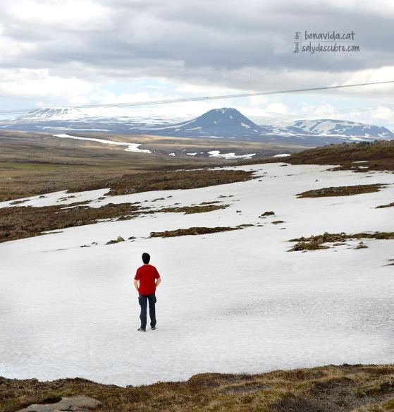 Tot i ser el mes de juny, passem per moltes zones nevades