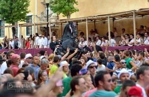 La Plaça de la Constitució acull l''exhibició de cavalls i genets