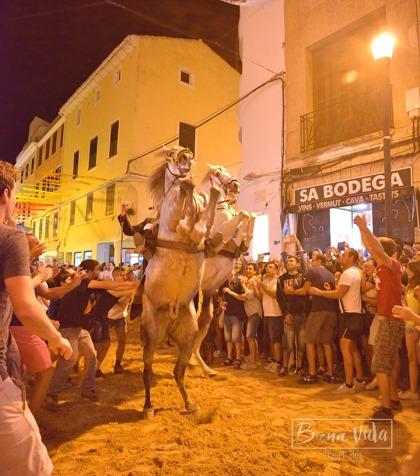 Els cavalls s'alcen imponents al son de la música