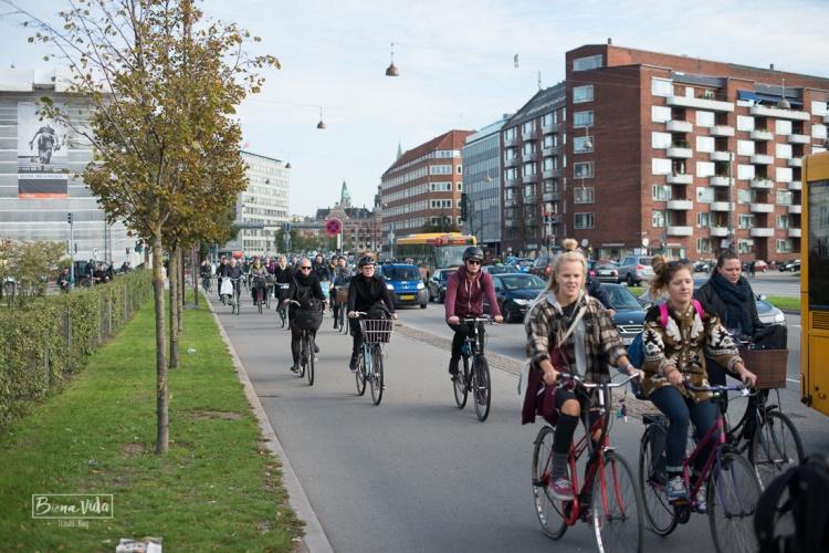 Aqui tothom es desplaça en bici.