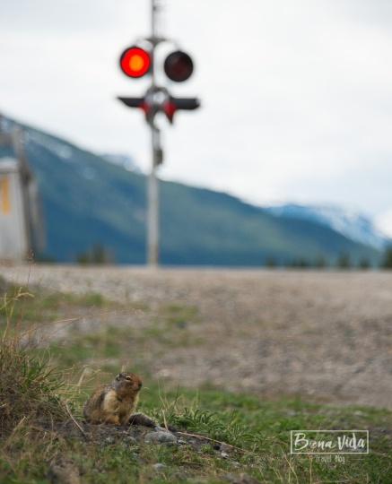 canada3250_Banff