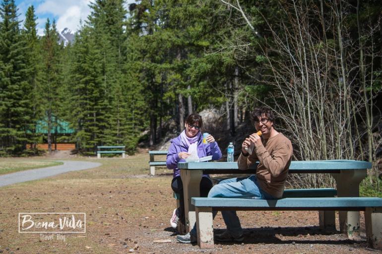 Podem fer senderisme i picnics