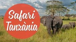 icones safari tanzania cat