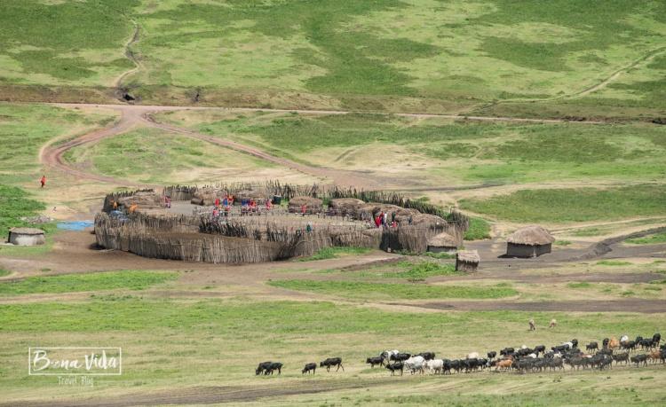 tanzania poblat massai