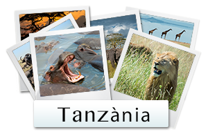 galeria fotos tanzania