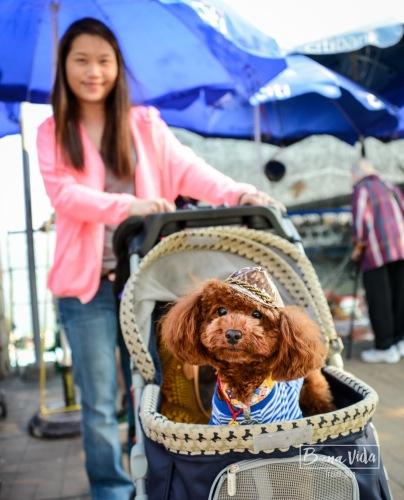 hongkong_mercat_saikun-17