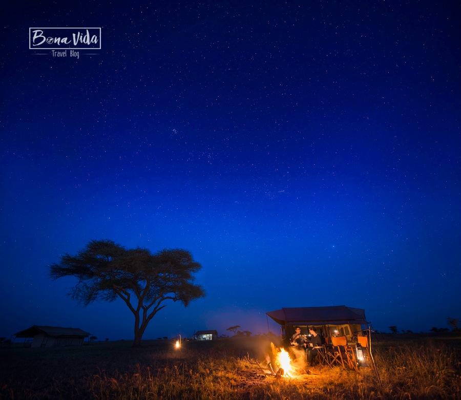 tanzania nosaltres nit serengeti estrelles ok