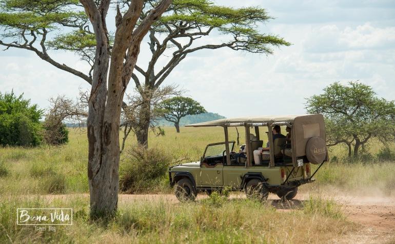 tanzania safari 4x4 obert-1