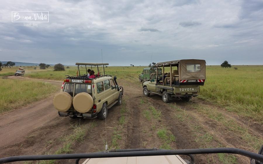 tanzania safari serengeti cotxes-1