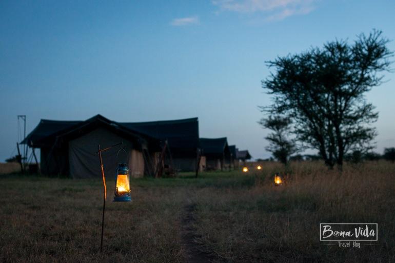 tanzania safari serengeti tendes-1