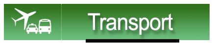 banner transport cat