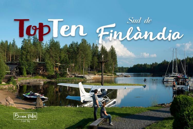finlandia topten picture cat