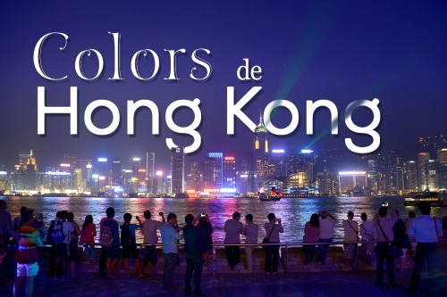 hongkong colors bv cat