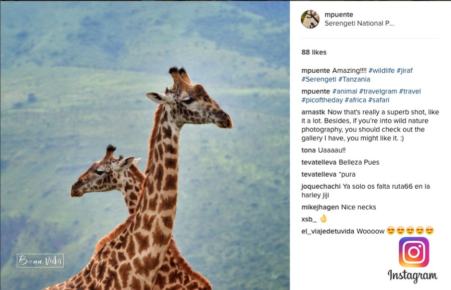 instagram 02 tanzania