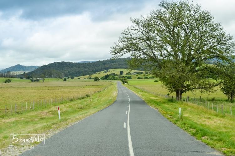 australia-tasmania-19