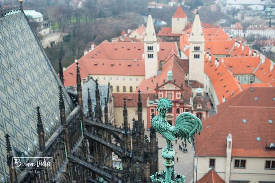 praga-castell-catedral-25