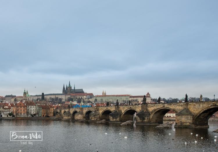 praga-castell-catedral-7
