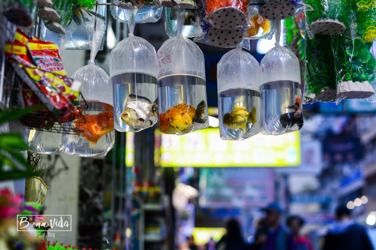 hongkong-mong-kok-market-3