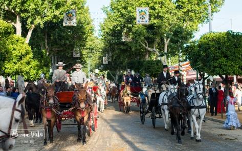 Cavalls i carrosses omplen la Feria fins les 20h de la tarda