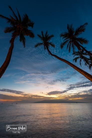 hawaii platges-21