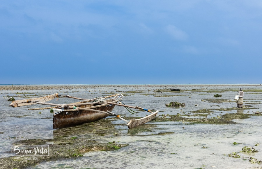 zanzibar_beach-18