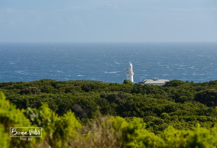 australia great ocean road-20