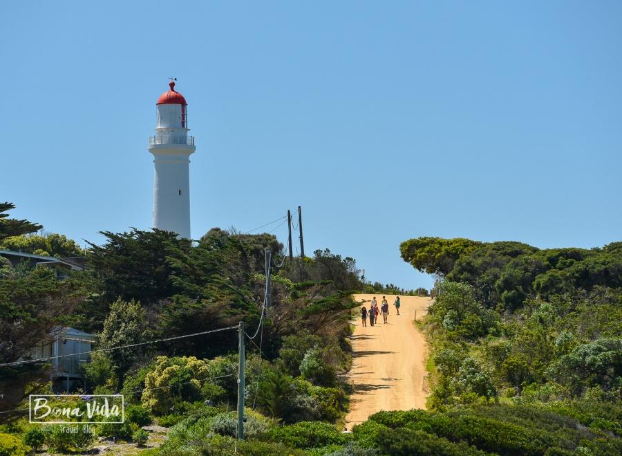 australia great ocean road-36