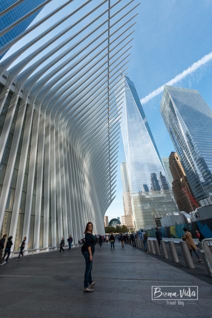 newyork oculus station-7