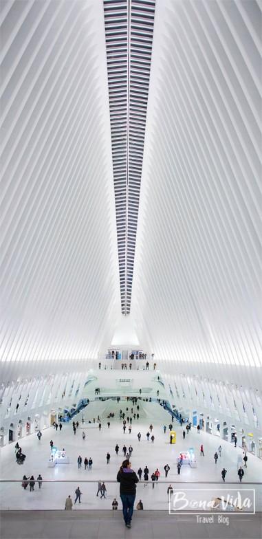 newyork oculus station cris