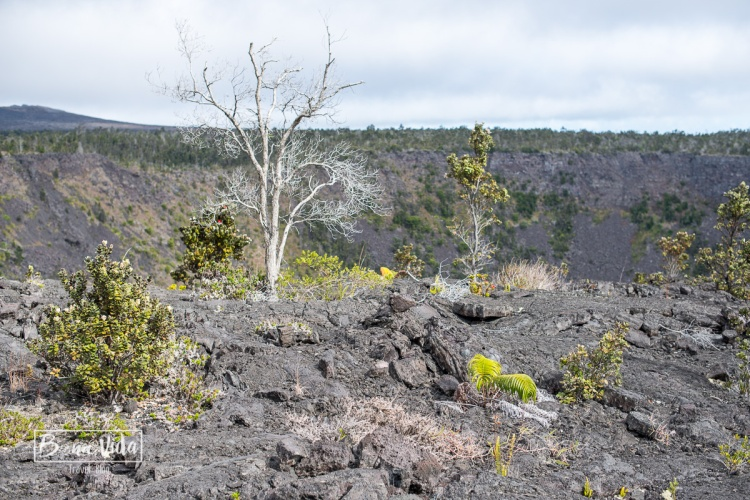 hawaii volca kilauea-20