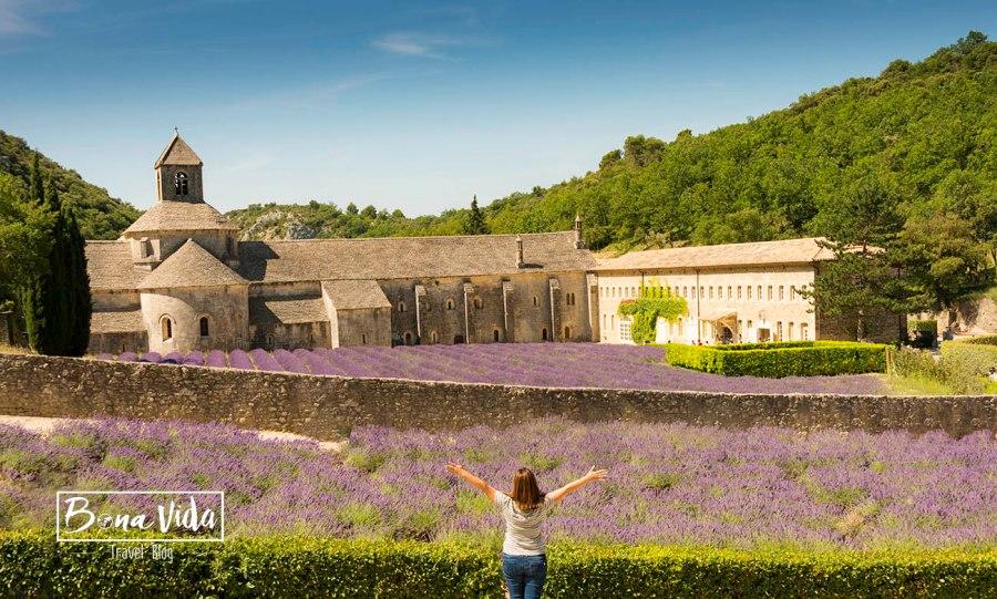france provence lavanda cris abadia senanque