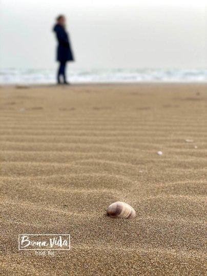 catalunya delta ebre platja del trabucador